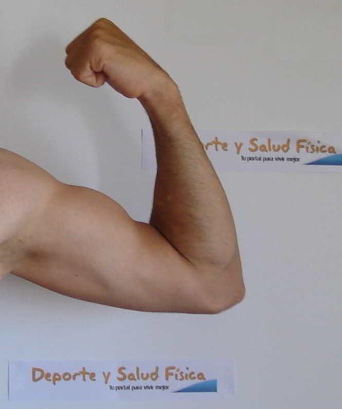Consigue biceps más fuerte con electroestimulacion y electroestimuladores compex, cefar, globus..