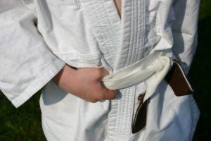 Artes marciales, judo, karate, entrenamiento, boxeo en https://www.electroestimulaciondeportiva.com/ Fuente imagen www.sxc.hu